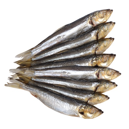 Fish food isolated on white background photo