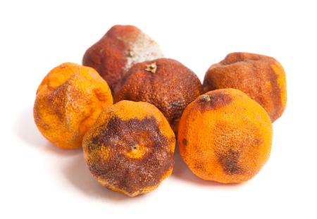 perishable: Group of rotten oranges isolated on white background