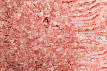 forcemeat: Forcemeat Stock Photo