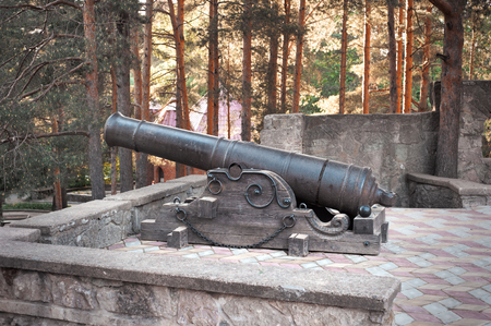 cannon: Old cannon