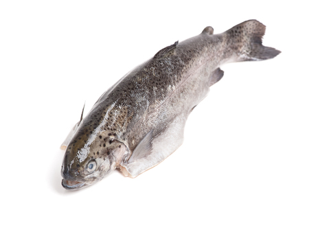 gutted: Gutted trout isolated on white background