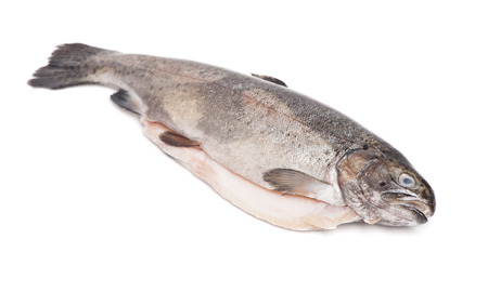 Gutted trout isolated on white background