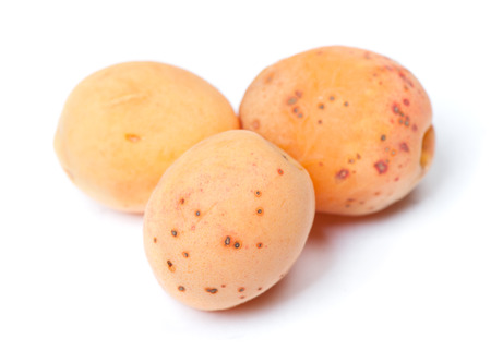 Rotten apricots with mold isolated on white background