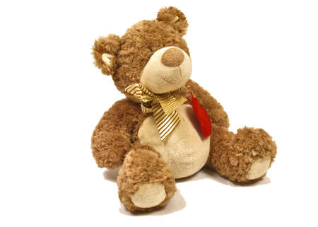 toy teddy bear on a white background