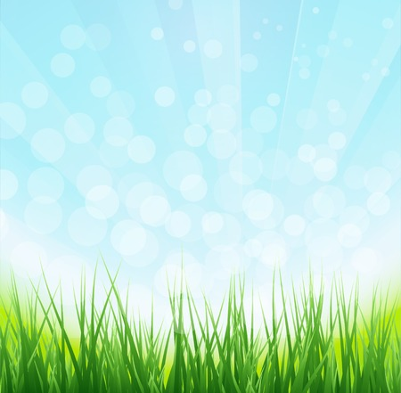 grass background: illustration Nature background with chamomile flower