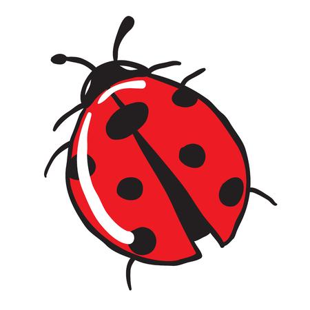 ladybug: ladybug cartoon doodle