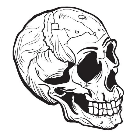 白に隔離された頭蓋骨黒と白の漫画のイラスト  イラスト・ベクター素材