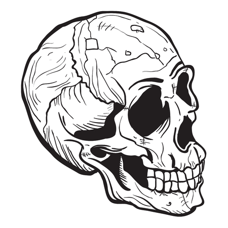 skull black and white cartoon illustration isolated on white Illustration