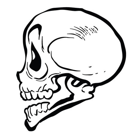 skull cartoon illustration isolated on white