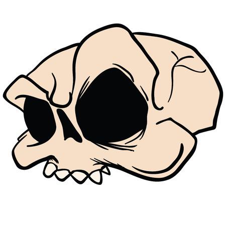 白で隔離された頭蓋骨漫画のイラスト