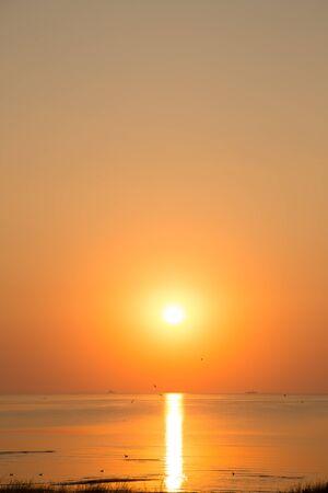 Beautiful sunrise by the sea