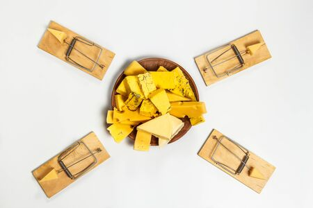 Tasty cheese on a plate and a mousetrap with cheese Stock fotó