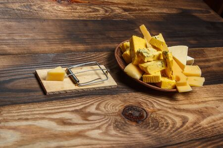 Tasty cheese on a plate and a mousetrap with cheese