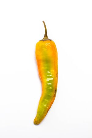 Hot peppers for spicy dishes on a white background