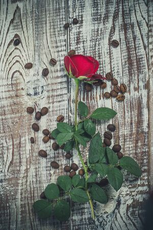Beautiful red rose on an old vintage surface