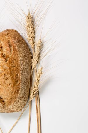 Tasty fresh black and white bread with wheat and flour on a white background
