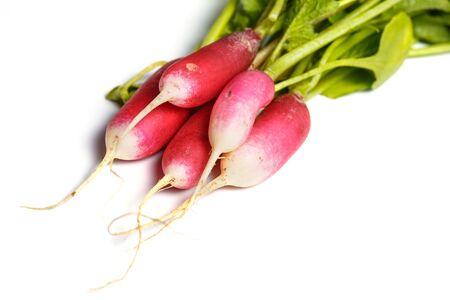 Fresh radish on a white background, vegetarianism