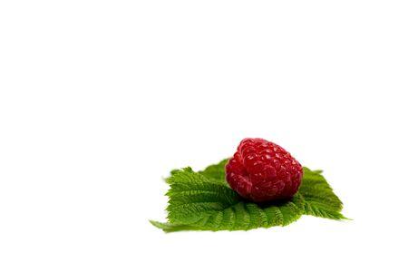 Fresh red raspberries and green leaf on a white background