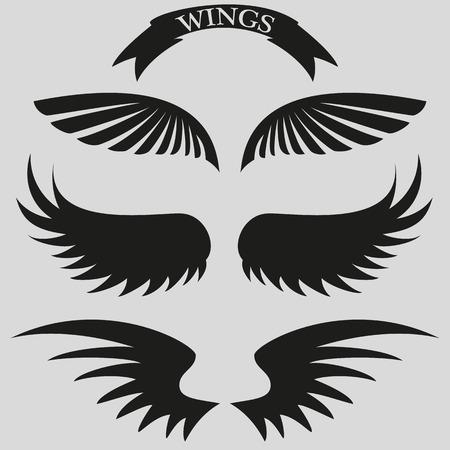ali angelo: set di belle, eleganti ali. Vettoriali