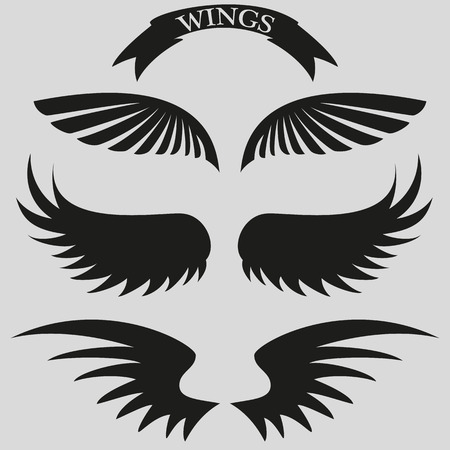 angel wings: set of beautiful, stylish wings. Stock vector