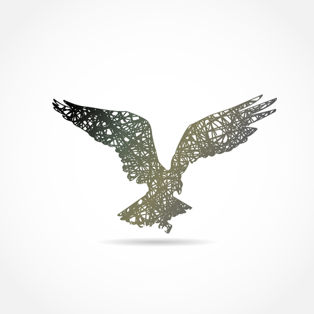 hawk: silhouette of a flying eagle. painted logo