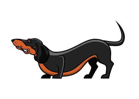 Dachshund dog - isolated vector illustration Illusztráció