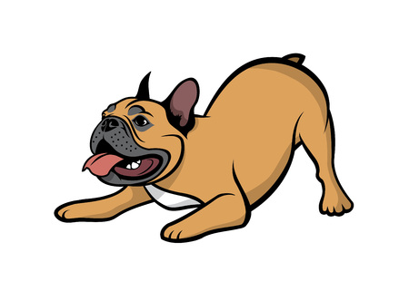 French bulldog - isolated vector illustration
