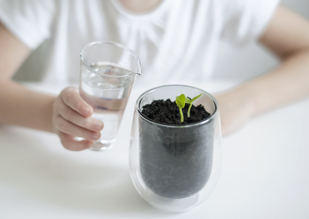 Little toddler girl is holding a transparent glass with water and watering young plant. Caring for a new life. The childs hands. Selective focus. Earth day holiday concept. World Environment Day