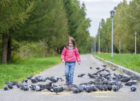 Child is playing with pigeon birds at city garden, lot of doves on path in public park