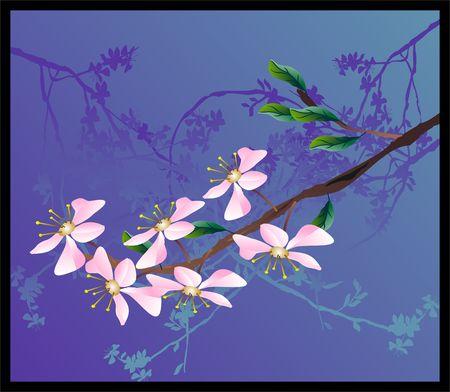 sepals: sakura
