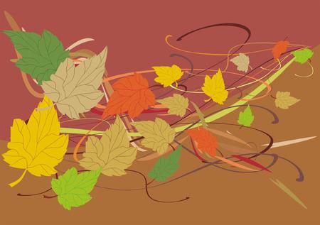 rural area: autumn