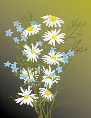 flowers Stock Photo - 2025897