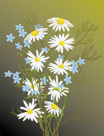 flowers Stock Vector - 2036894