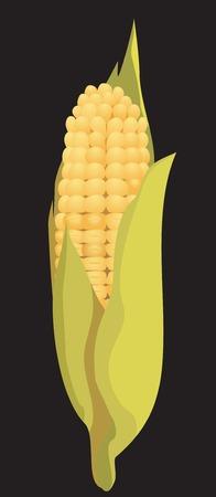 ядра: кукуруза Иллюстрация