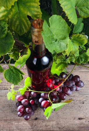 pink wine: bottle with pink wine and grape,focus on a grape.
