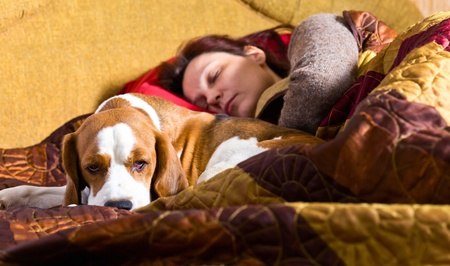 The sleeping woman and its dog , focus on a dog. Stock Photo - 12848212
