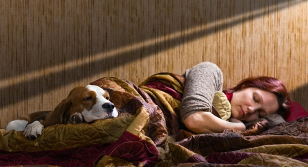 The sleeping woman and its dog , focus on a dog. Stock Photo