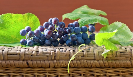 wattled: blue grape with leaves on a wattled table.