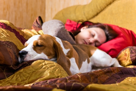 The sleeping woman and its dog , focus on a dog. Stock Photo - 14420748
