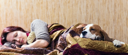 The sleeping woman and its dog , focus on a dog. Stock Photo - 14759223