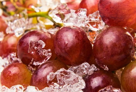 ripe red grapes on a plate with ice  photo