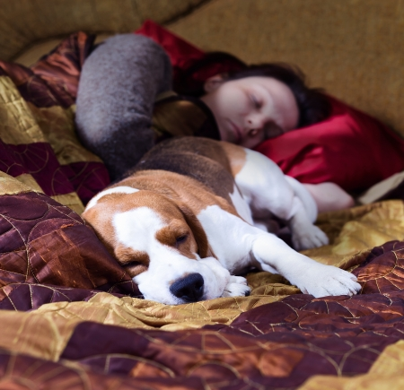 The sleeping woman and its dog , focus on a dog.  photo