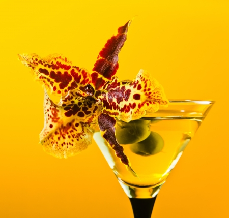 martini , green olives and orchid flower on a yellow background photo