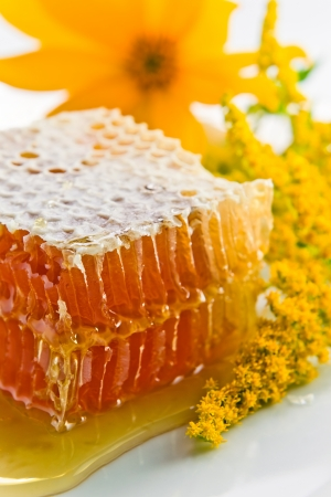 sweet honeycomb with honey and yellow flowers photo