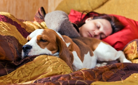 The sleeping woman and its dog photo