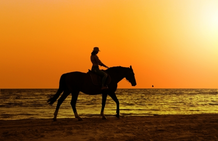 horse riding:  young  beautiful girl with horse on seacoast