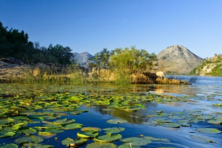 hectares:  Skadar lake.The Montenegrin part of the lake, at a size of 40000 hectares, was declared a National Park in 1983.