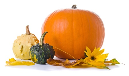 pumpkins: pumpkins and yellow leaves isolated on a white background Stock Photo