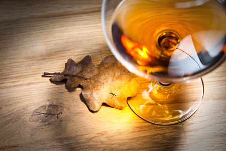snifter: snifter with brandy and dried oak leaf