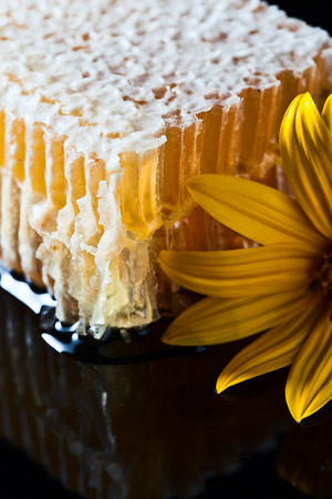 reflexive: sweet honeycomb and yellow flower on black reflexive background Stock Photo